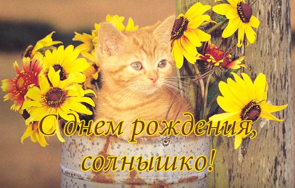 http://www.zverisha.ru/pics_max/images_1122.jpg
